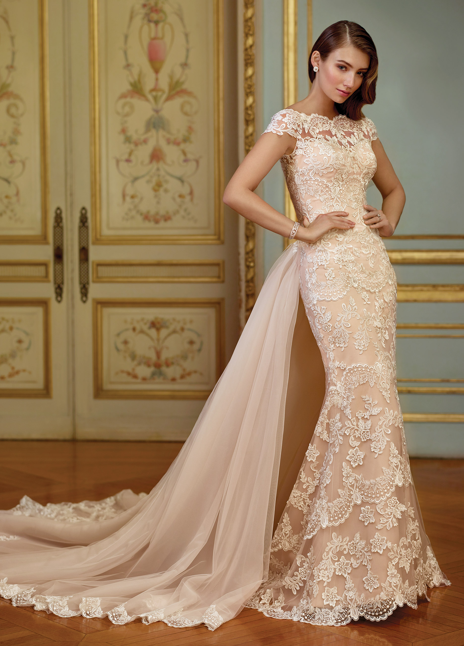 22395bf03d3 Embroidered Schiffli lace appliqué on tulle over organza fit and flare gown  with illusion scalloped lace cap sleeves